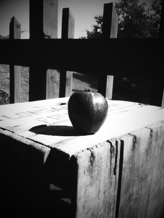 apple on crate