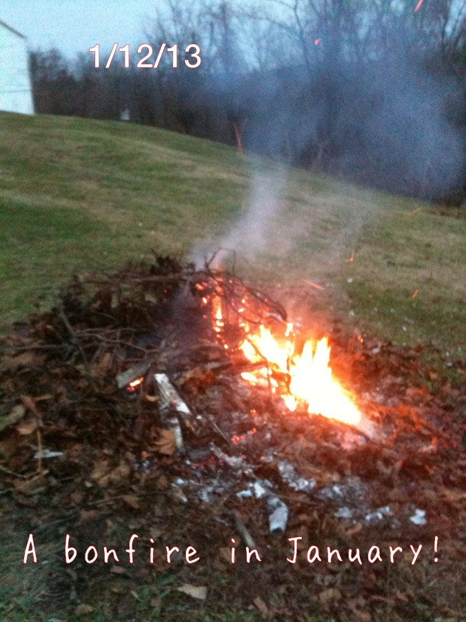 Bonfire in January