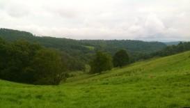 hills of Greene County, PA