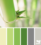 Bamboo Tones -- Design Seeds