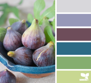 This is called Fig Hues from Design-Seeds. I love these colors, but Mr. H.C. doesn't like blue...