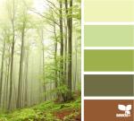 ForestTones -- Design Seeds