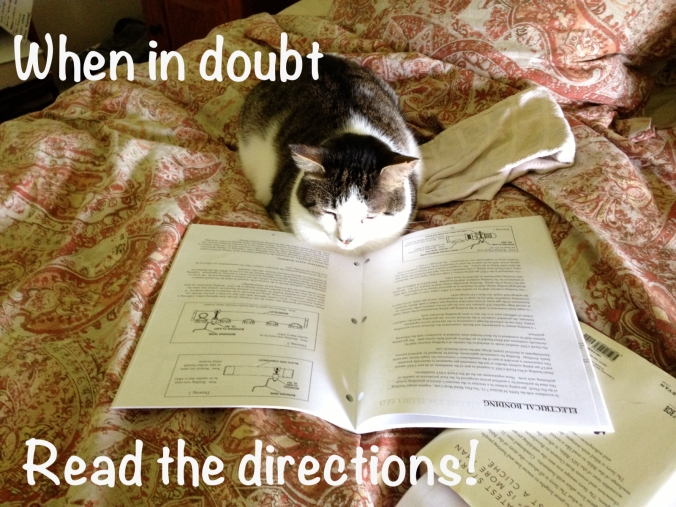 cat reading directions