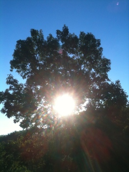Sun rising in Autumn of last year,