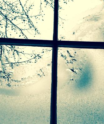 cross out my window