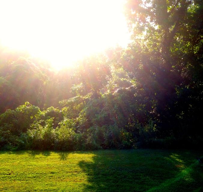 Sunrise in July