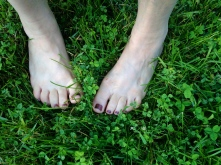 bare feet in clover