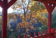 Back porch view autumn