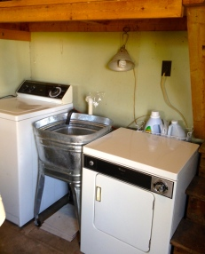 washer and dryer in working order...