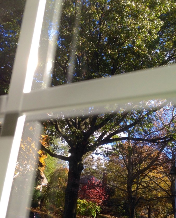 fall through the window