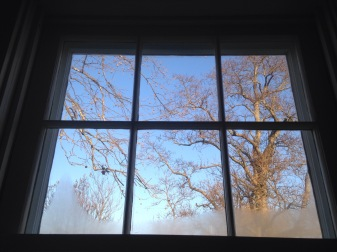 4. Frosted kitchen window color