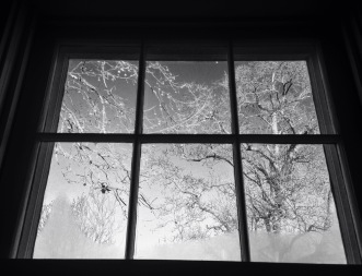 3. Frosted kitchen window