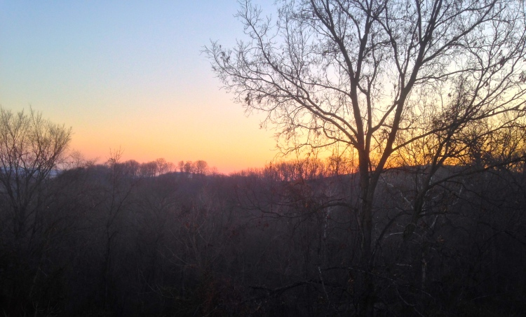 Sunrise from my bedroom