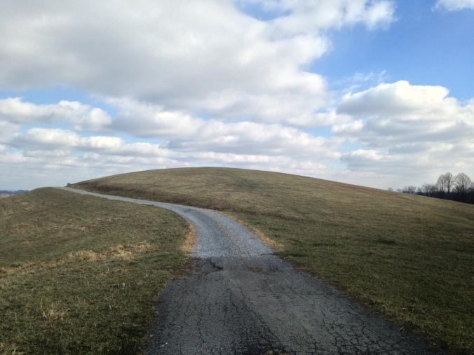 Bare hill