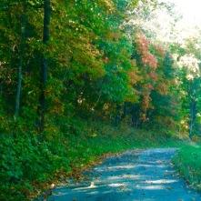 Greene County roads