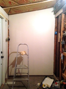 Cedar is gone, the walls are insulated and drywall over the insulation