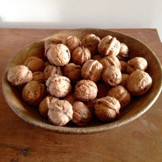 The Last Bowl of Walnuts