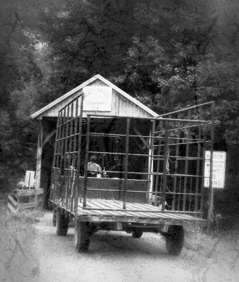 wagon and covered bridge