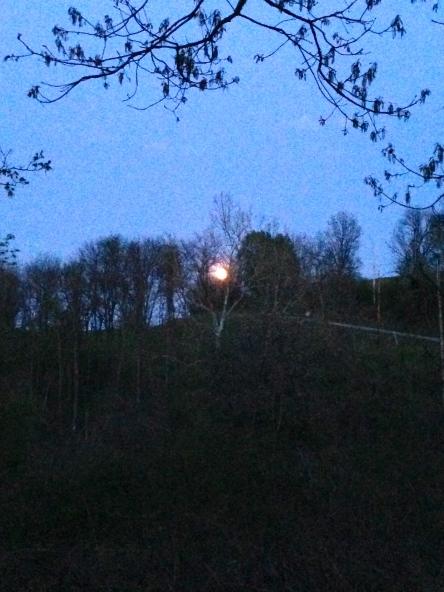 spring full moon