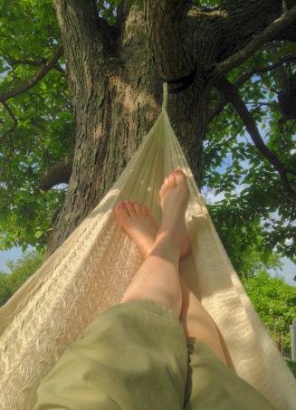 hammock dreaming