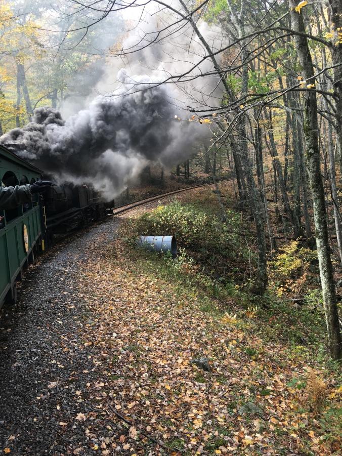 Coal fired steam Shay locomotive